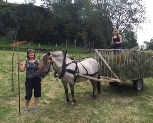 Brynhild og hesten